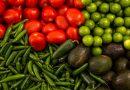 Piden no dañar la agricultura e industria agroalimentaria de América del Norte con TLCAN