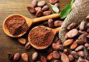 Ghana y Costa de Marfil gestionarán juntos exportaciones de cacao