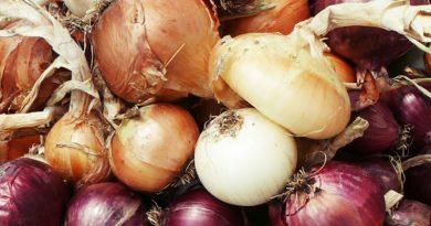 Economías regionales destacan que cada variedad de cebolla tiene su beneficio para la salud