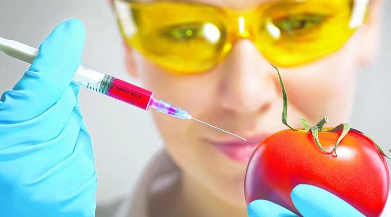 Creando alimentos funcionales para la salud